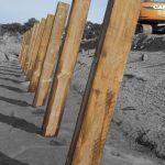 Pieux et parois en pin imprégné pour les berges de ce port ostreicole